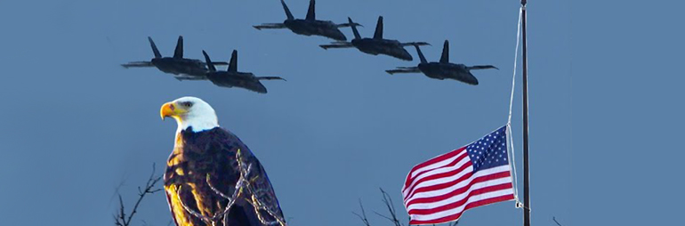Blue Angels Buzz the 9 Mile Tower Lake St. Clair