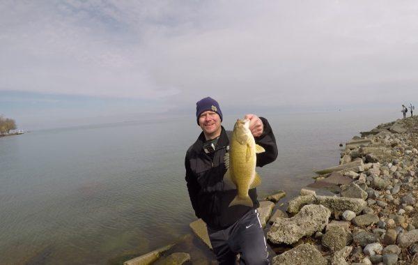 Smallmouth Bass at Lake St. Clair Metropark